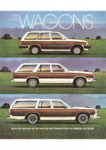 1981 Ford Wagons
