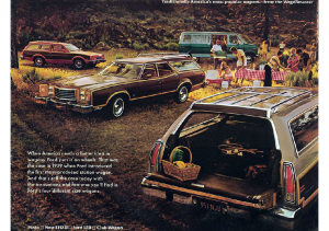 1977 Ford Wagons